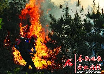 安徽巢湖疑因烧纸引发山火 嫌疑人已被刑拘