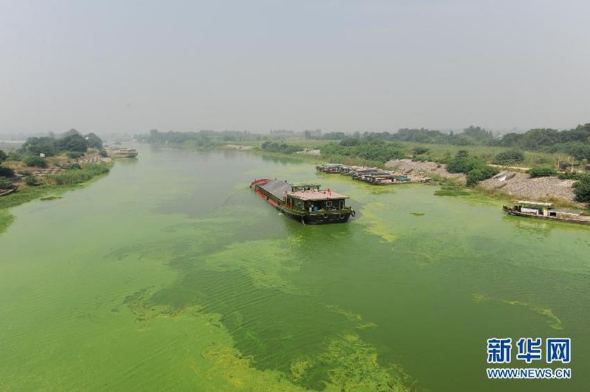 月20日,轮船航行在派河入巢湖口污染严重的水面上