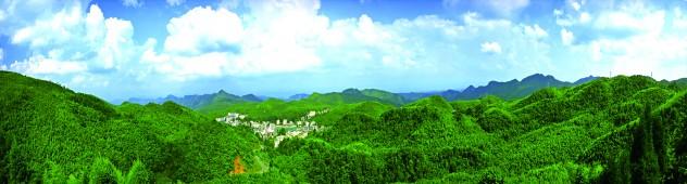 大洞竹海风景区魅力凸显
