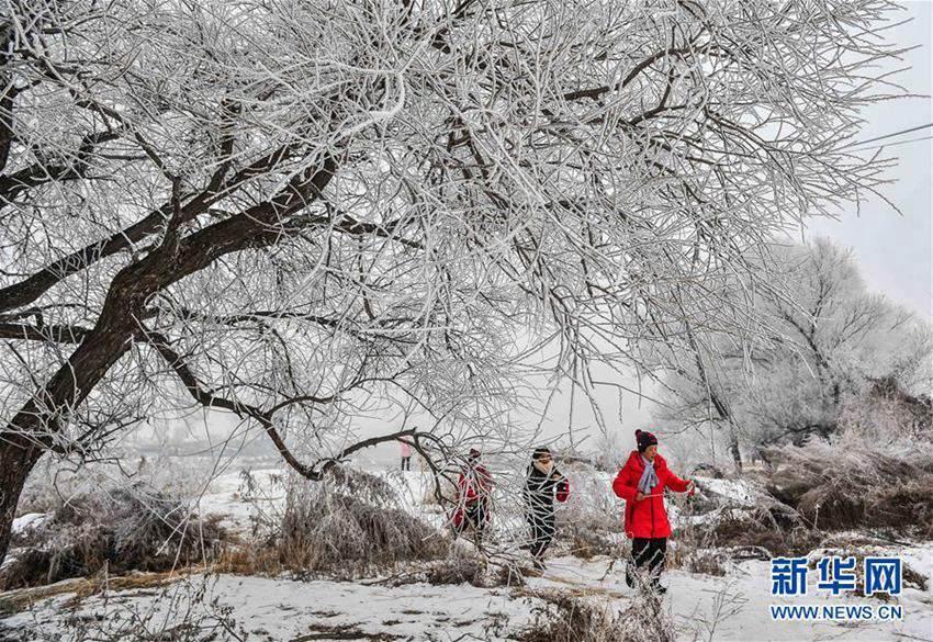 12月19日,游客在吉林市雾凇岛景区观赏雾凇景色.