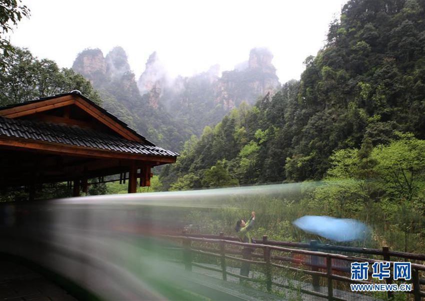 (慢门拍摄).当日,湖南张家界迎来降雨天气,雨中的武陵源十里图片