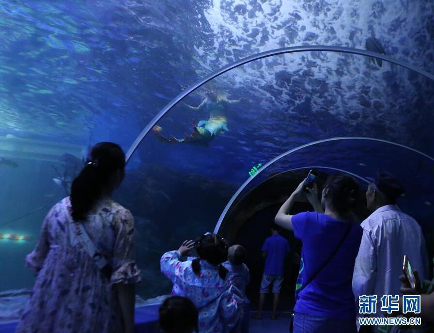 壁纸 海底 海底世界 海洋馆 水族馆 896_687