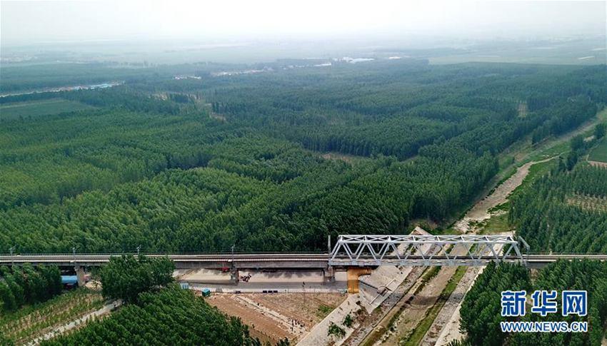 【高清】河北东光:打造大运河绿色廊道