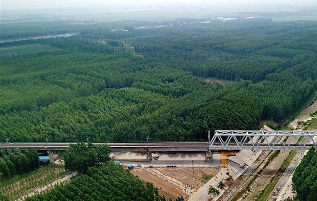 河北东光:打造大运河绿色廊道