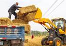 永清:小麦丰收秸秆变宝