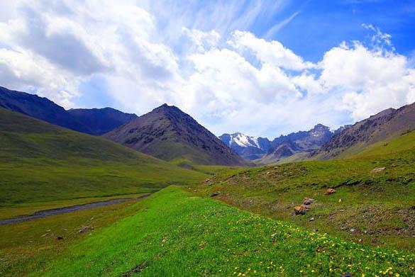 新疆托克逊:草原风光美