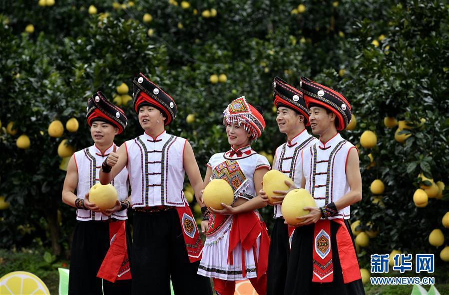 【高清】湖北恩施:贡水白柚丰收文化节
