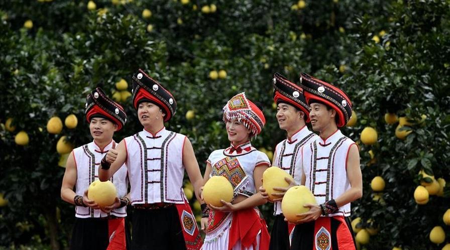 湖北恩施:贡水白柚丰收文化节