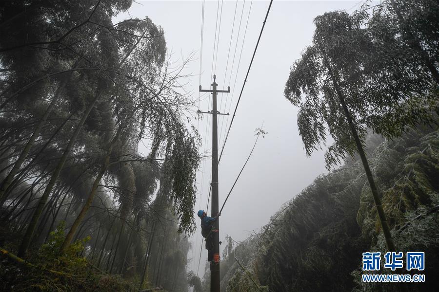 【高清】浙江:山区抢修 保障居民用电