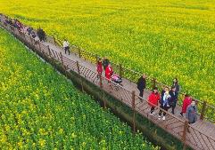 广汉:以花为媒促旅游