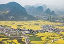 贵州六枝:花开春意浓