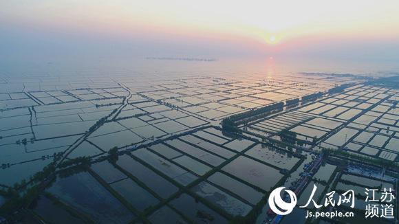 淮安洪泽张福河村:干群合力唱响渔村新风情