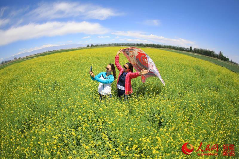 """新疆博湖:""""恰玛古""""花开幸福来"""